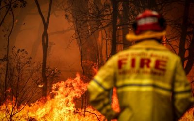 Bushfire Recovery – Letter to the Premier