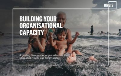 Building your Organisational Capacity Resource now available for the sector